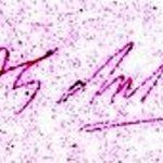 ए पी जे अब्दुल कलाम आज़ाद हस्ताक्षर