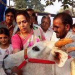 हेमा मालिनी एक पशु प्रेमी