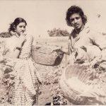 श्रीदेवी के साथ कमल हासन फिल्म 16 वायथिनइल में
