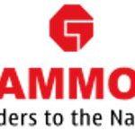 अक्षत राजन के पिता की सिविल इंजीनियरिंग निर्माण कंपनी 'गैमन इंडिया लिमिटेड'